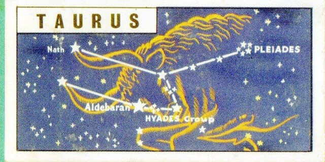 Constellation of the month December : Taurus