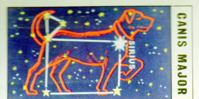 Constellation of the Month February : Canis Major
